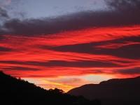 Fuschia Sky 2