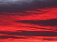Fuschia Sky
